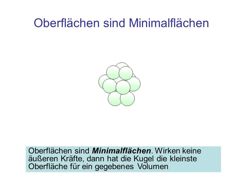 Zusammenfassung Bei Vergrößerung der Oberfläche werden Kugelpackungen aus dem Inneren der Flüssigkeit unter Energieaufwand aufgebrochen, Folge: Die Vergrößerung der Oberfläche erfordert Arbeit, proportional zur Flächenzunahme Die Proportionalitätskonstante ist die Oberflächenspannung σ 0, Einheit [J/m 2 ] –Oberflächenspannung in Wasser 0,073 J/m 2 Bei Vergrößerung der Oberfläche ist die Kraft auf einen Bügel der Länge l F = 2· l · σ 0 Oberflächen sind Minimalflächen