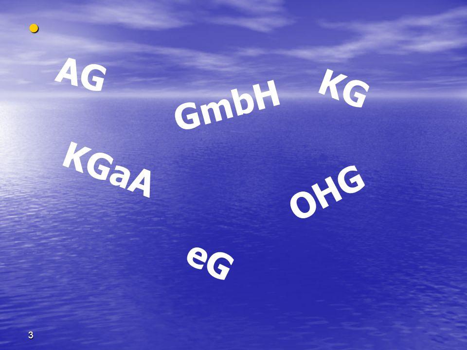 3 AG GmbH KGaA OHG KG eG