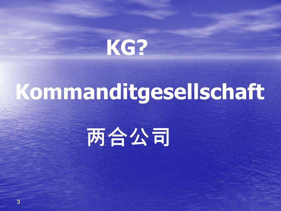 3 Kommandit Gesellschaft auf Aktien ( KGaA )