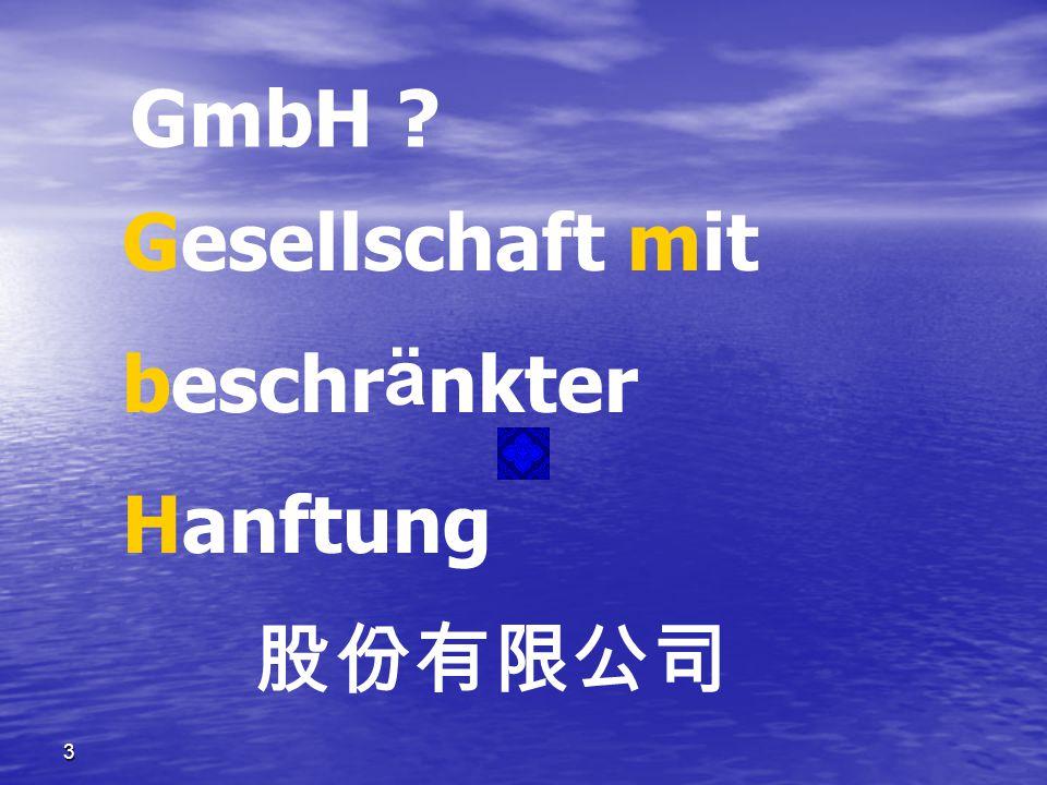 3 GmbH ? Gesellschaft mit beschr ä nkter Hanftung 股份有限公司