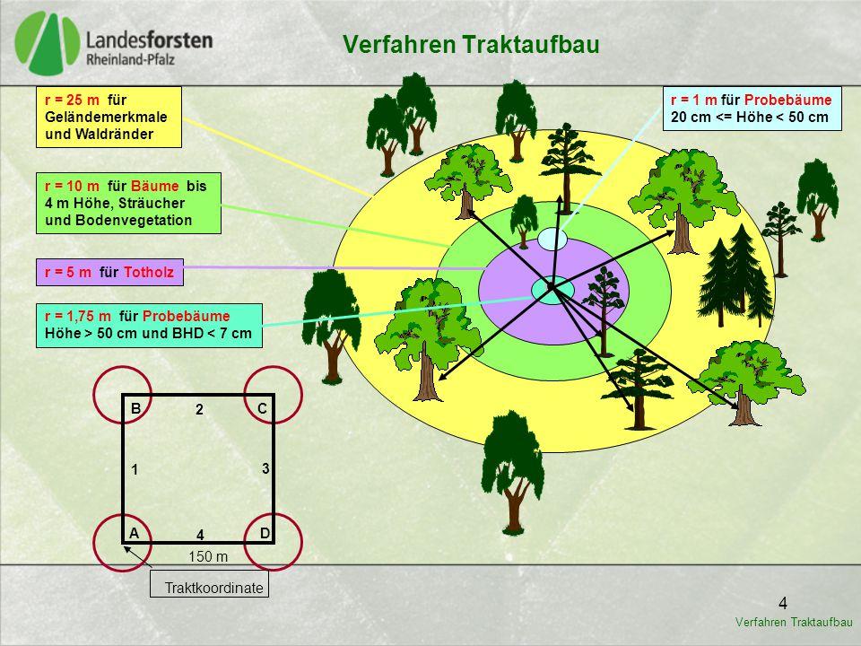 4 4 B D A C 1 2 3 150 m Traktkoordinate r = 25 m für Geländemerkmale und Waldränder r = 10 m für Bäume bis 4 m Höhe, Sträucher und Bodenvegetation r =