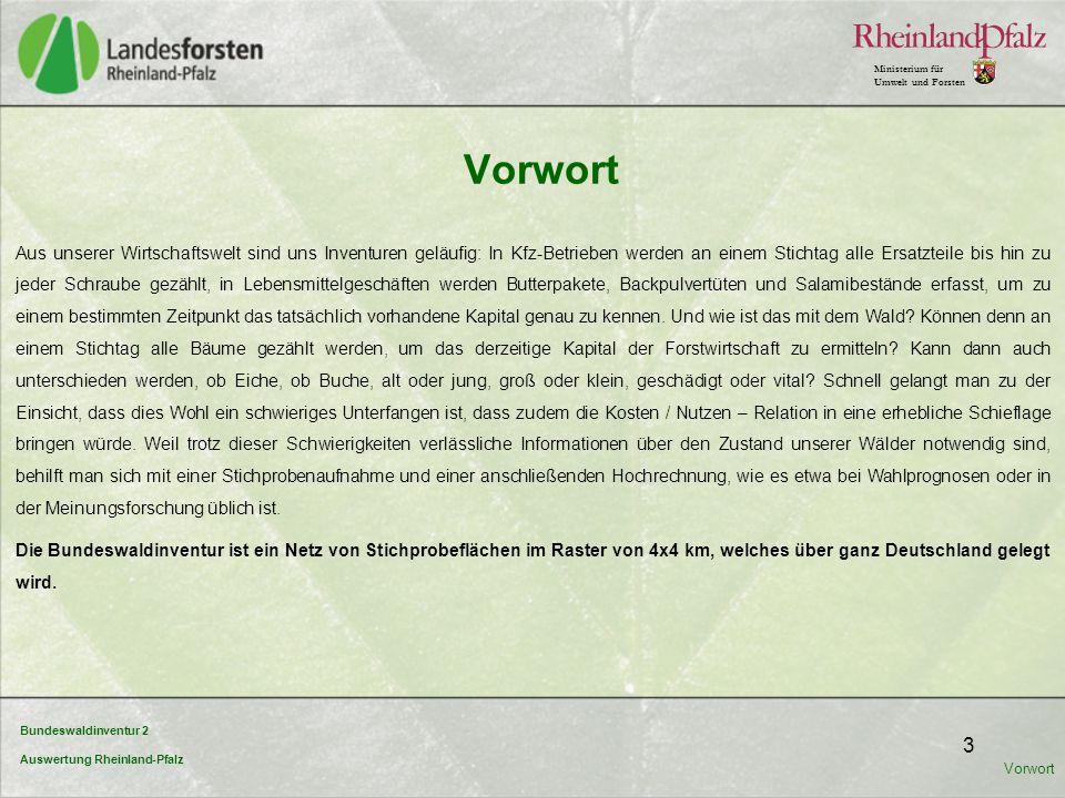 """Bundeswaldinventur 2 Auswertung Rheinland-Pfalz Ministerium für Umwelt und Forsten 4 Nach § 41 a Bundeswaldgesetz sind die Bundesländer zur Durchführung einer Bundeswaldinventur verpflichtet, um """"einen Gesamtüberblick über die großräumigen Waldverhältnisse und forstlichen Produktionsmöglichkeiten nach einem einheitlichen Verfahren zu erhalten."""