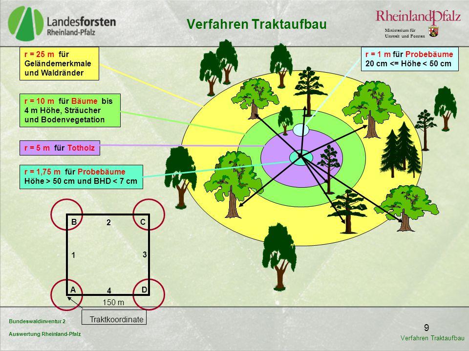Bundeswaldinventur 2 Auswertung Rheinland-Pfalz Ministerium für Umwelt und Forsten 9 4 B D A C 1 2 3 150 m Traktkoordinate r = 25 m für Geländemerkmal