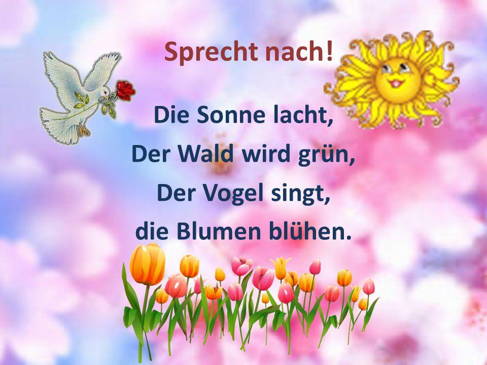 Sprecht nach! Die Sonne lacht, Der Wald wird grün, Der Vogel singt, die Blumen blühen.