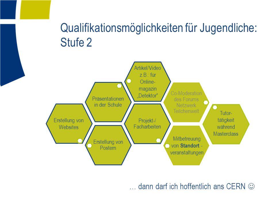 Qualifikationsmöglichkeiten für Jugendliche: Stufe 2 Erstellung von Postern Projekt-/ Facharbeiten Präsentatione nin der Schule Co-Moderation des Foru