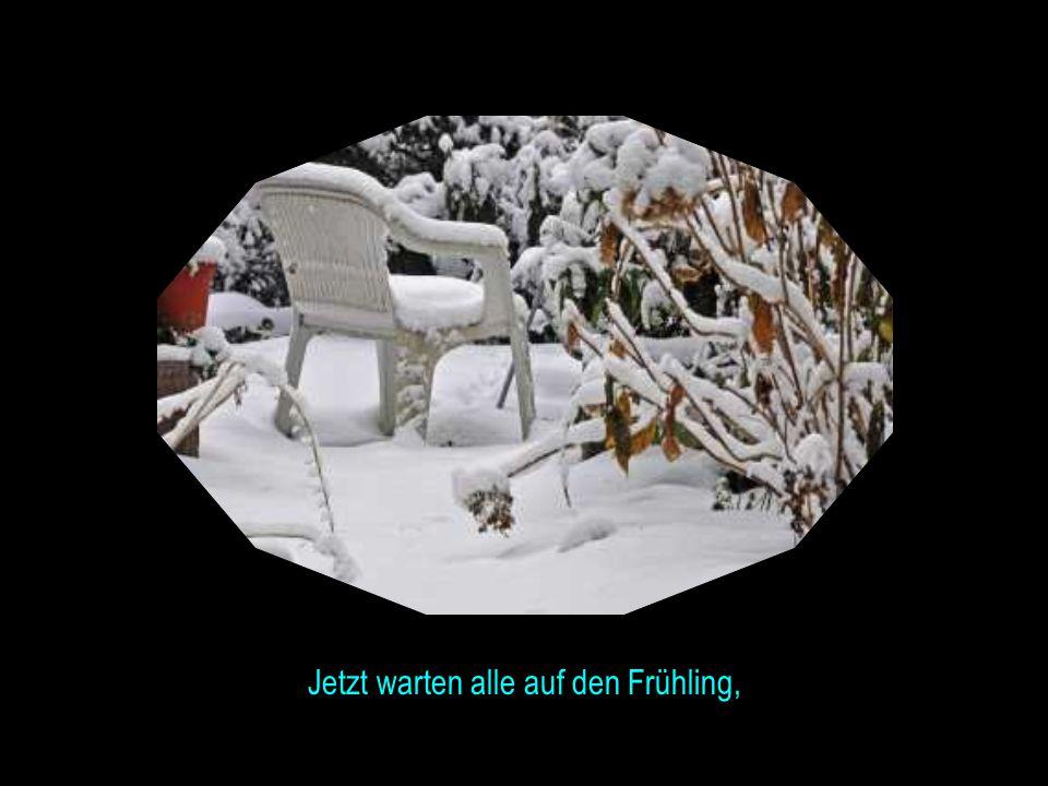 Winter und Frühling liefern sich ein spannendes Duell...