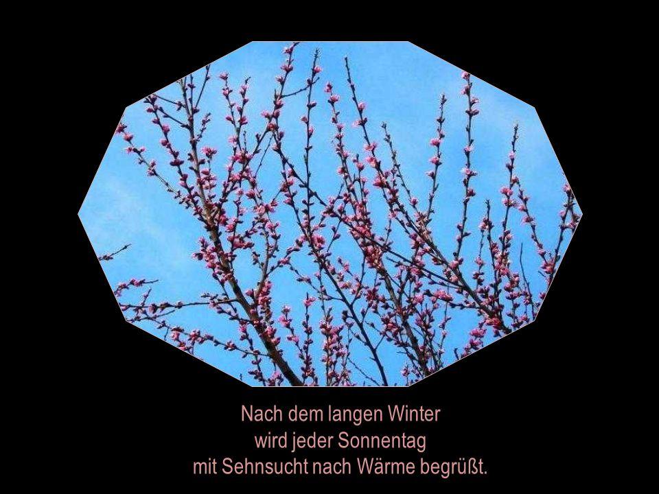 ... aber der Frühling mag auch nicht länger warten.