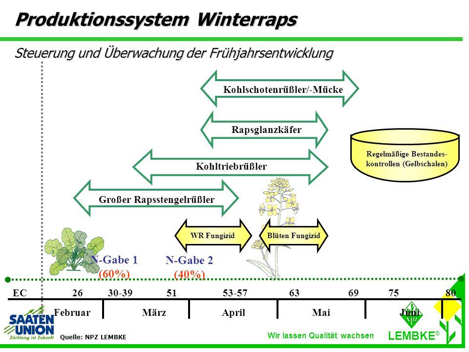 Wir lassen Qualität wachsen LEMBKE ® FebruarMärzAprilMai Juni EC2630-395153-5763756980 WR FungizidBlüten Fungizid Kohlschotenrüßler/-Mücke Rapsglanzkäfer Kohltriebrüßler Großer Rapsstengelrüßler Regelmäßige Bestandes- kontrollen (Gelbschalen) N-Gabe 1 (60%) N-Gabe 2 (40%) Quelle: NPZ LEMBKE Produktionssystem Winterraps Steuerung und Überwachung der Frühjahrsentwicklung