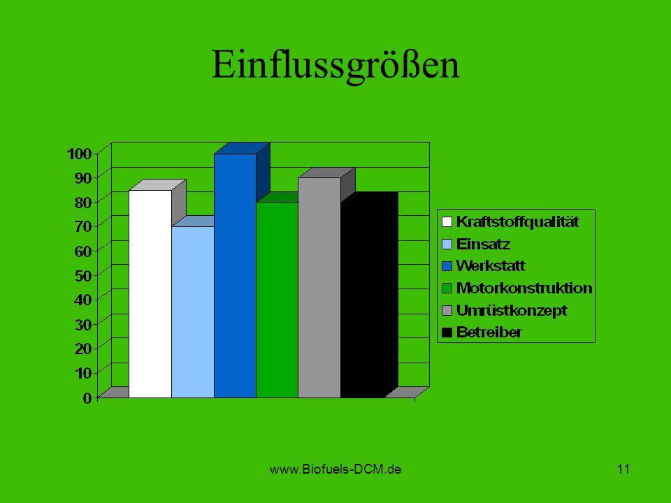 www.Biofuels-DCM.de11 Einflussgrößen