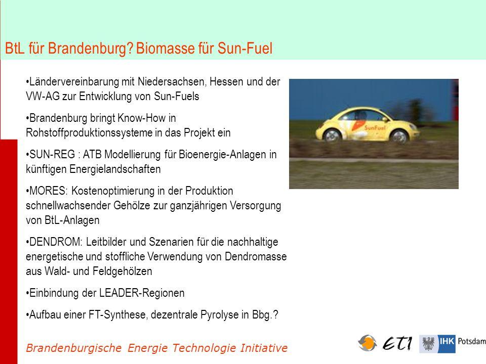 BtL für Brandenburg? Biomasse für Sun-Fuel Brandenburgische Energie Technologie Initiative Ländervereinbarung mit Niedersachsen, Hessen und der VW-AG