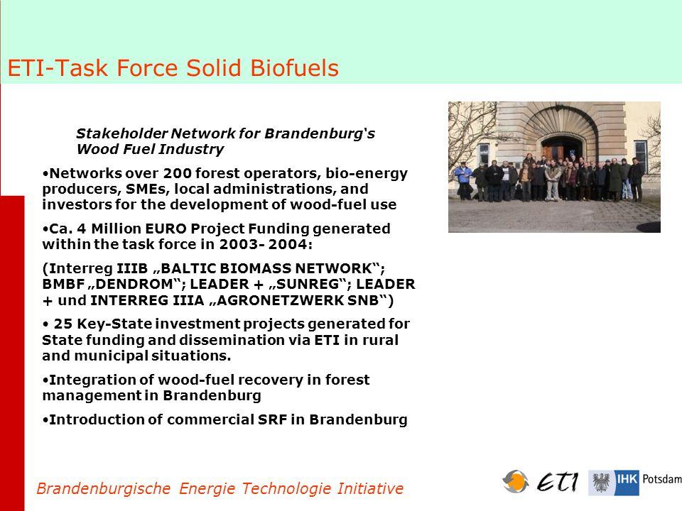 Bio-Energy investment in Brandenburg – Implementing the Energy Strategy 39 biogas plants (40 under construction) 870 wood-fuel boilers <5 MW 14 biomass power plants 8 biodiesel plants 1 bio-ethanol plant 95 Million Euros in State grants = Over 700 Millionen Euros bio-energy investment Brandenburgische Energie Technologie Initiative