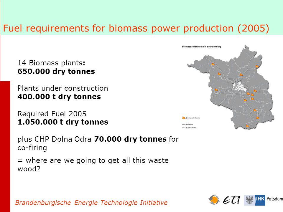 The new EEG and Wood Fuel Brandenburgische Energie Technologie Initiative