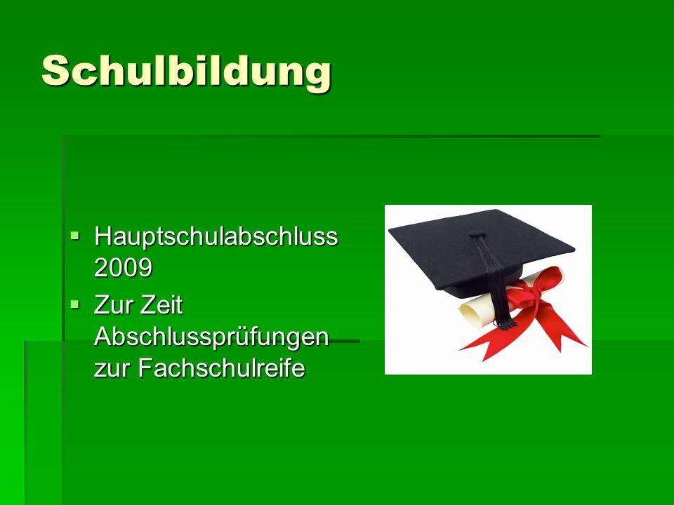 Schulbildung  Hauptschulabschluss 2009  Zur Zeit Abschlussprüfungen zur Fachschulreife