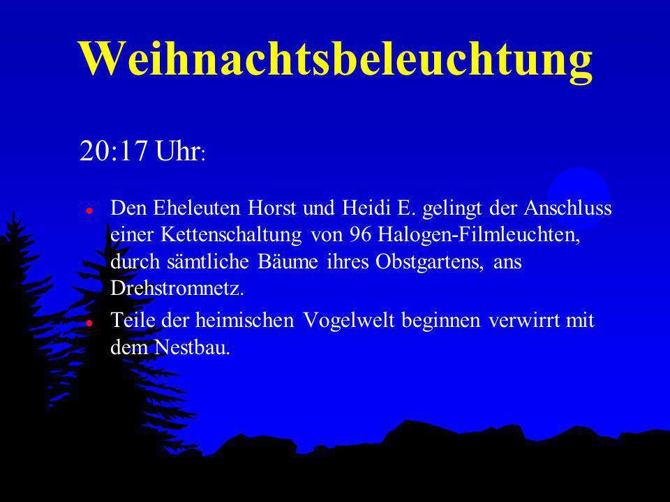 Weihnachtsbeleuchtung l Den Eheleuten Horst und Heidi E.