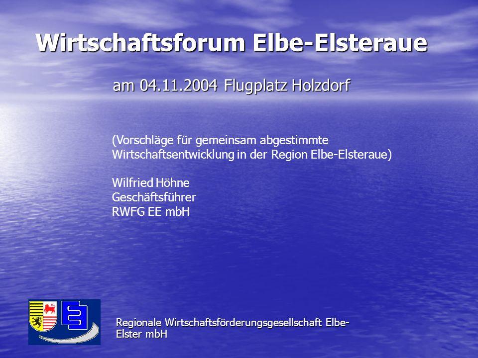 Wirtschaftsforum Elbe-Elsteraue am 04.11.2004 Flugplatz Holzdorf Regionale Wirtschaftsförderungsgesellschaft Elbe- Elster mbH (Vorschläge für gemeinsam abgestimmte Wirtschaftsentwicklung in der Region Elbe-Elsteraue) Wilfried Höhne Geschäftsführer RWFG EE mbH