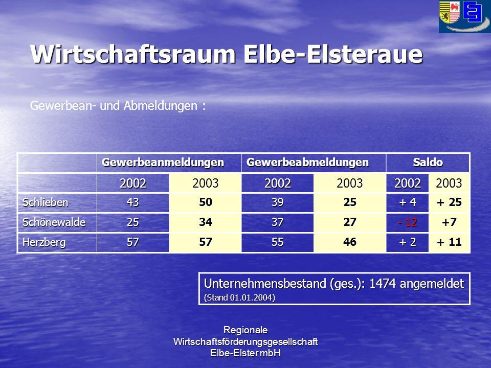 Regionale Wirtschaftsförderungsgesellschaft Elbe-Elster mbH Wirtschaftsraum Elbe-Elsteraue GewerbeanmeldungenGewerbeabmeldungenSaldo 200220032002200320022003 Schlieben43503925 + 4 + 25 Schönewalde25343727 - 12 +7 Herzberg57575546 + 2 + 11 Gewerbean- und Abmeldungen : Unternehmensbestand (ges.): 1474 angemeldet (Stand 01.01.2004)