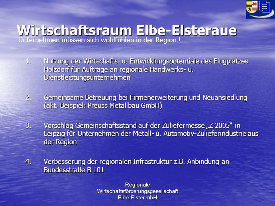 Regionale Wirtschaftsförderungsgesellschaft Elbe-Elster mbH Wirtschaftsraum Elbe-Elsteraue 1.Nutzung der Wirtschafts- u.
