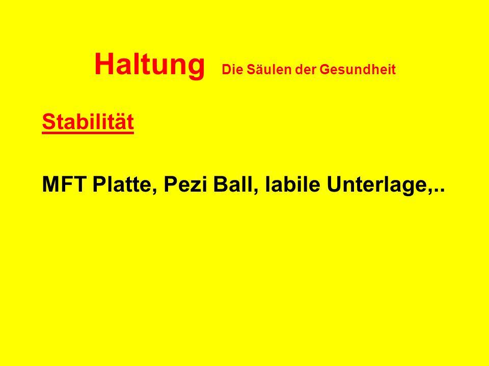 Haltung Die Säulen der Gesundheit Stabilität MFT Platte, Pezi Ball, labile Unterlage,..