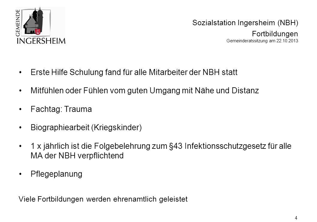 Sozialstation Ingersheim (NBH) Herausforderungen und anzupackende Aktivitäten Gemeinderatssitzung am 22.10.2013 5 immer mehr Dokumentation auch im hauswirtschaftlichen und Betreuungs-Bereich.