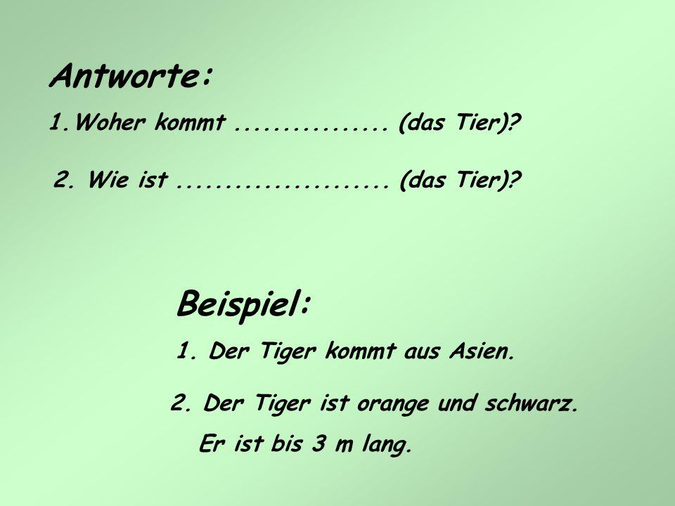Antworte: 1.Woher kommt................ (das Tier)? 2. Der Tiger ist orange und schwarz. Er ist bis 3 m lang. 2. Wie ist...................... (das Ti