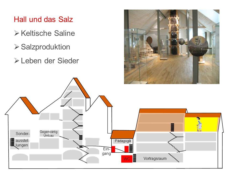 Vortragsraum WC Ein- gang Pädagogik Sonder- ausstel- lungen Gegenwärtig Umbau Hall und das Salz  Keltische Saline  Salzproduktion  Leben der Sieder
