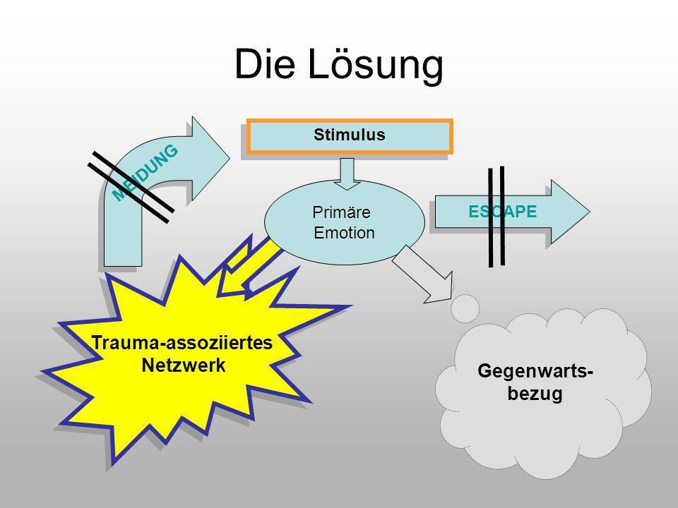 Stimulus Gegenwarts- bezug Trauma-assoziiertes Netzwerk Trauma-assoziiertes Netzwerk Die Lösung Primäre Emotion MEIDUNG ESCAPE