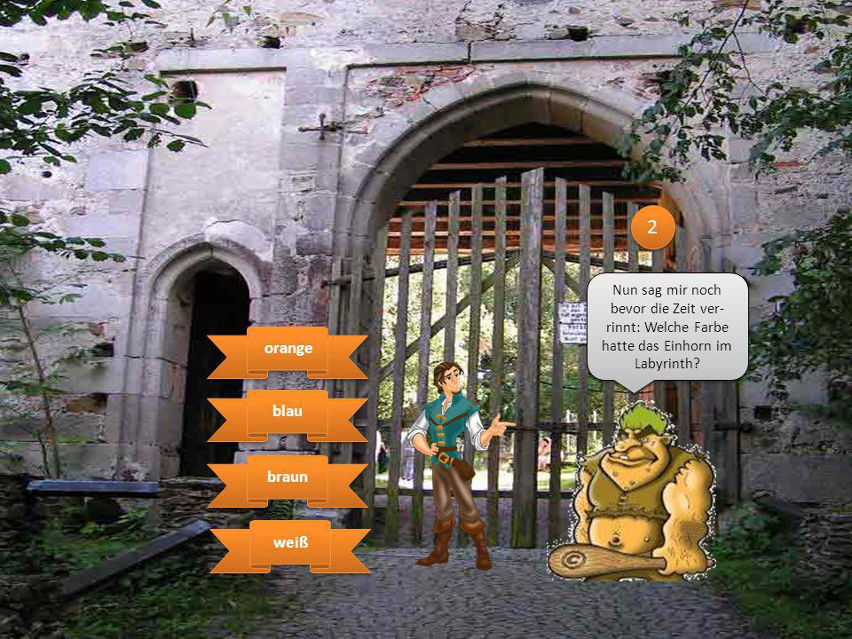 3 3 Nun sag mir noch bevor die Zeit ver- rinnt: Welche Farbe hatte das Einhorn im Labyrinth? blau weiß weiß braun orange orange