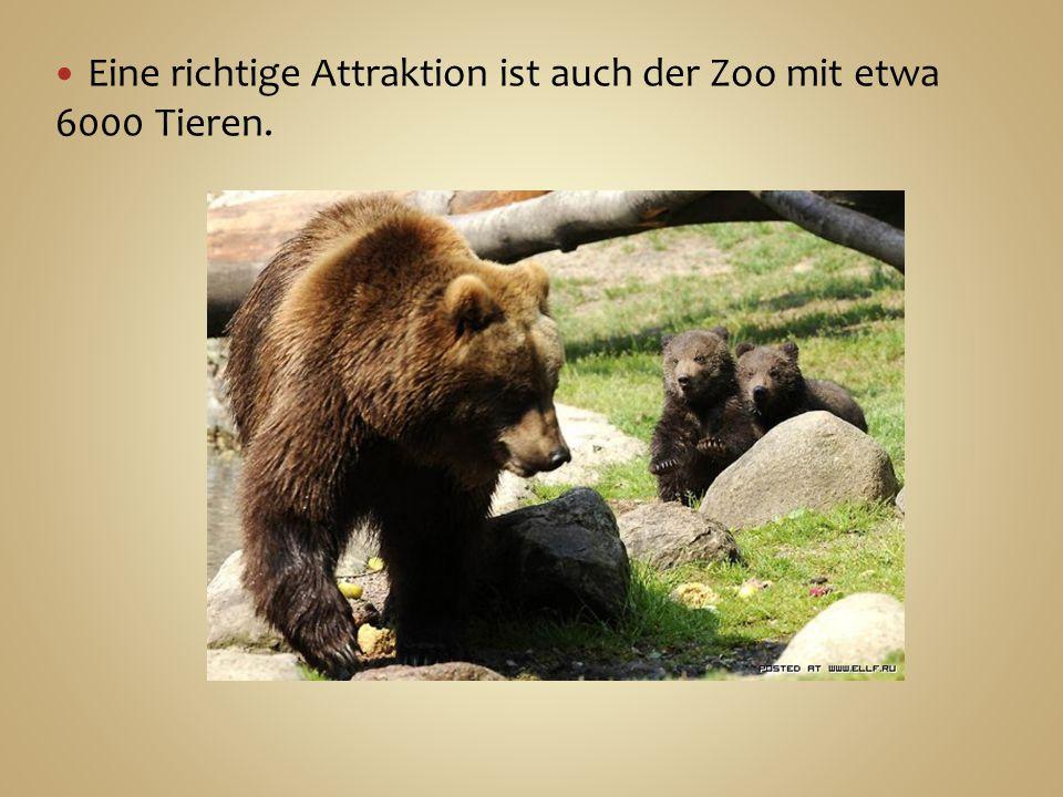 Eine richtige Attraktion ist auch der Zoo mit etwa 6000 Tieren.