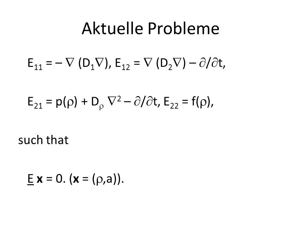 Aktuelle Probleme E 11 = –  (D 1  ), E 12 =  (D 2  ) –  /  t, E 21 = p(  ) + D   2 –  /  t, E 22 = f(  ), such that E x = 0. (x = ( ,a)).