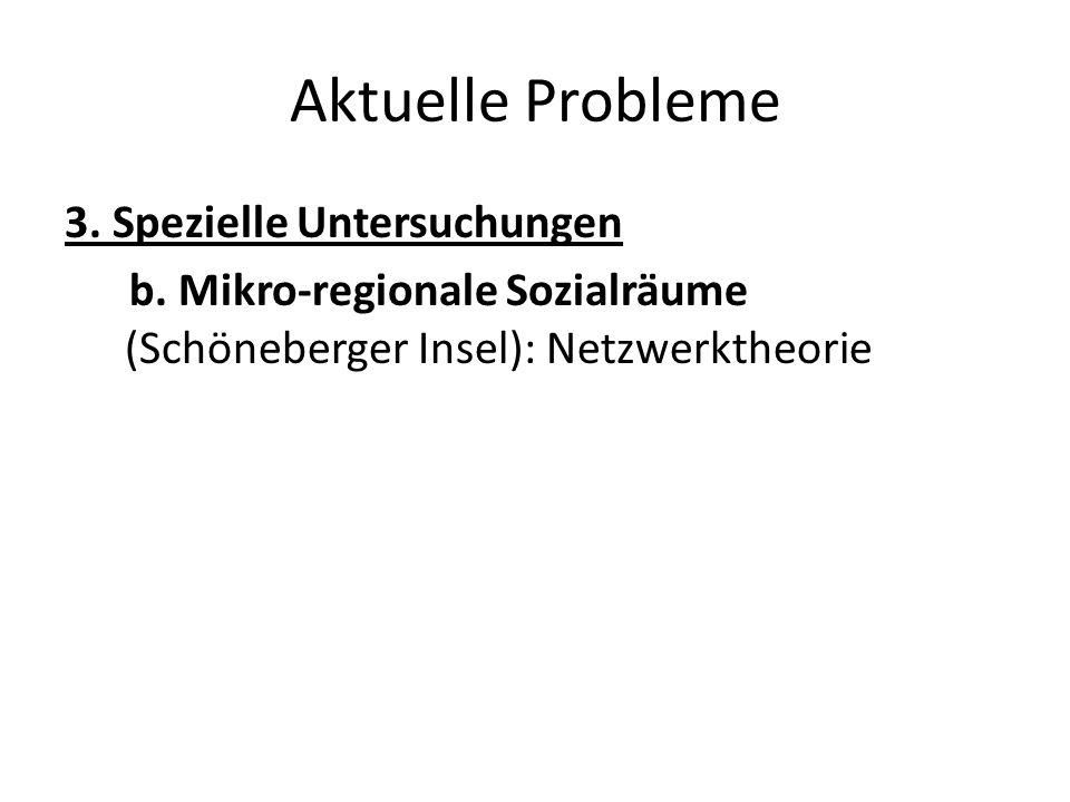 Aktuelle Probleme 3. Spezielle Untersuchungen b. Mikro-regionale Sozialräume (Schöneberger Insel): Netzwerktheorie