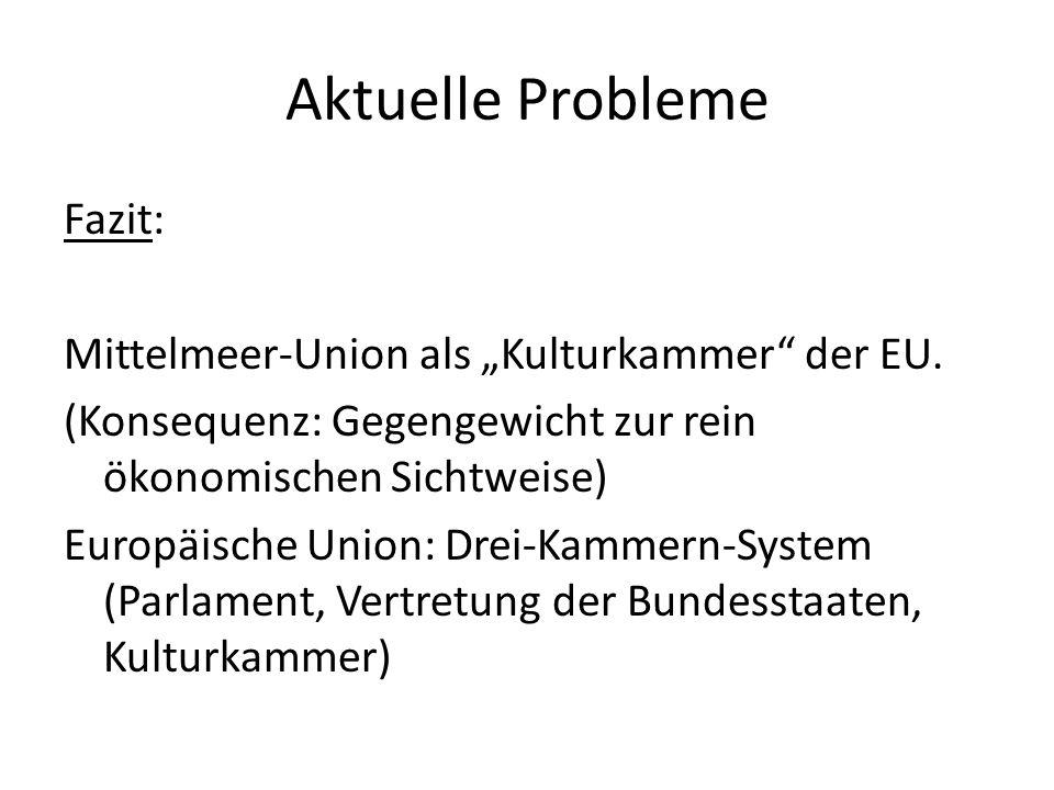 """Aktuelle Probleme Fazit: Mittelmeer-Union als """"Kulturkammer"""" der EU. (Konsequenz: Gegengewicht zur rein ökonomischen Sichtweise) Europäische Union: Dr"""
