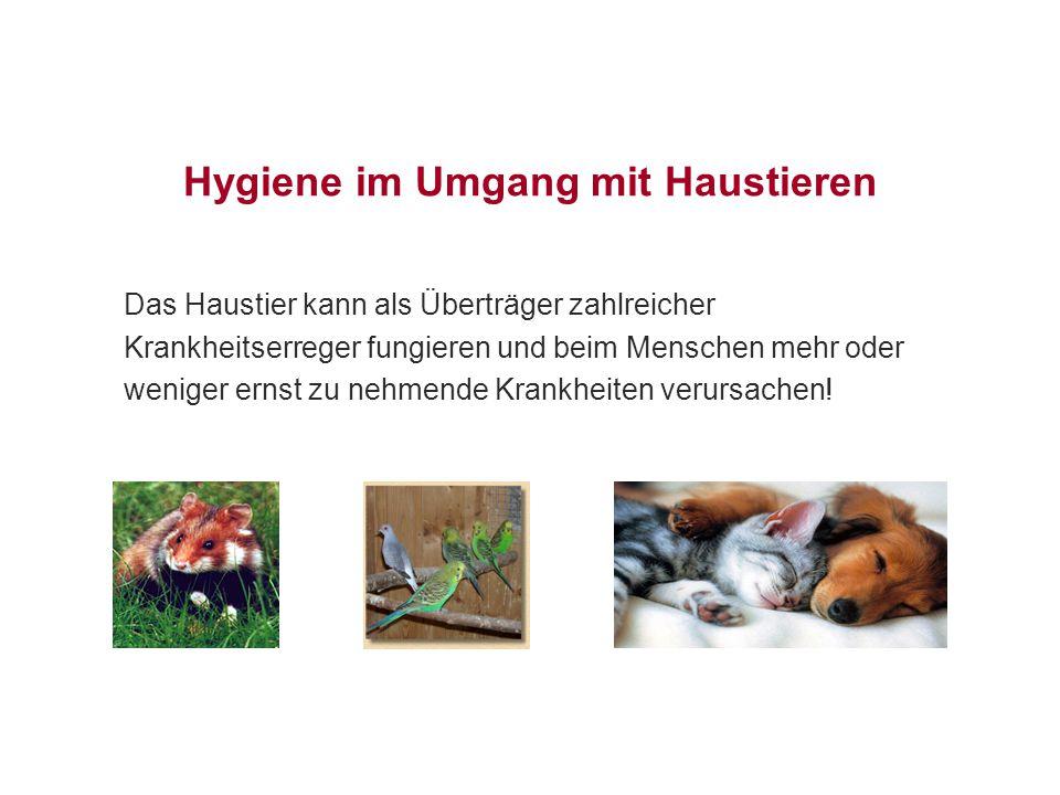 Das Haustier kann als Überträger zahlreicher Krankheitserreger fungieren und beim Menschen mehr oder weniger ernst zu nehmende Krankheiten verursachen!