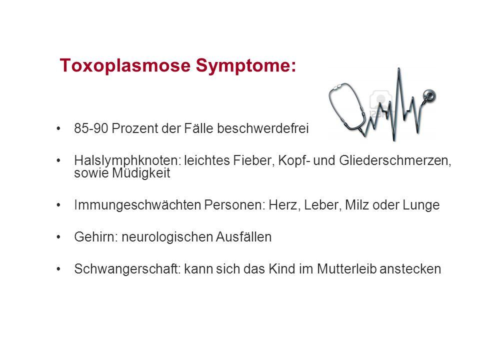Toxoplasmose Symptome: 85-90 Prozent der Fälle beschwerdefrei Halslymphknoten: leichtes Fieber, Kopf- und Gliederschmerzen, sowie Müdigkeit Immungeschwächten Personen: Herz, Leber, Milz oder Lunge Gehirn: neurologischen Ausfällen Schwangerschaft: kann sich das Kind im Mutterleib anstecken