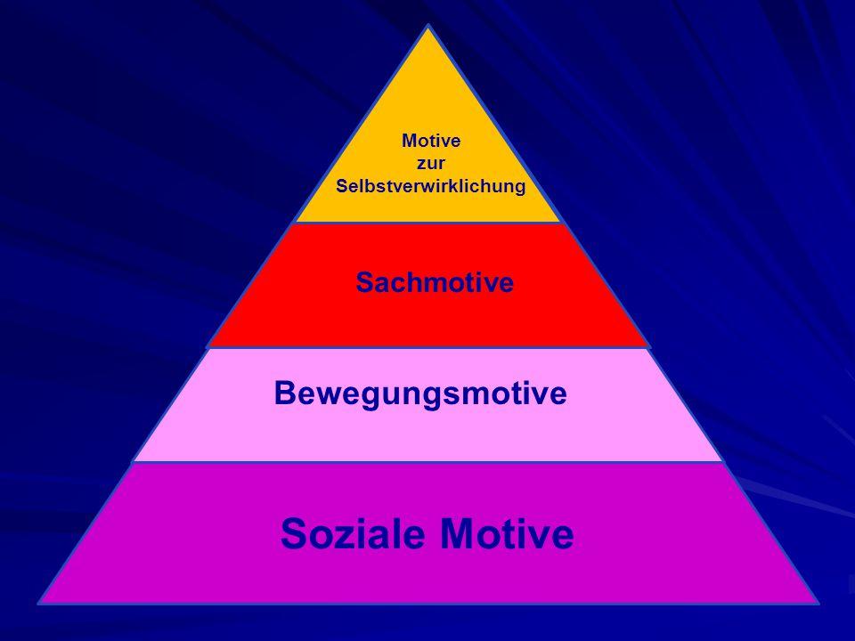 Soziale Motive Bewegungsmotive Sachmotive Motive zur Selbstverwirklichung
