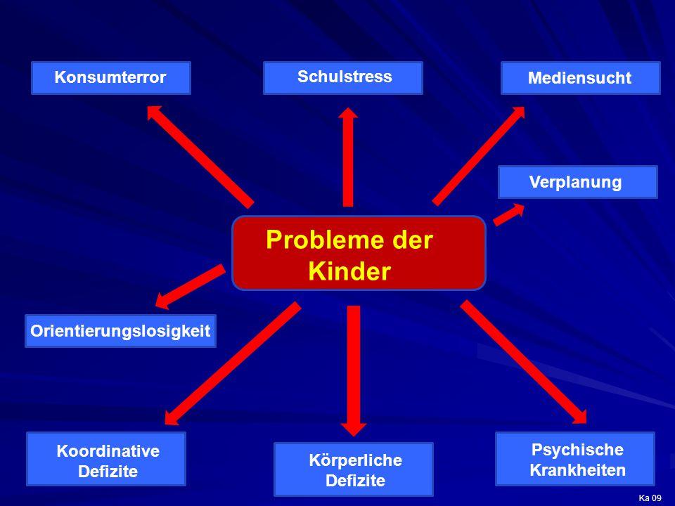 Probleme der Kinder Schulstress Konsumterror Mediensucht Körperliche Defizite Psychische Krankheiten Koordinative Defizite Orientierungslosigkeit Verp