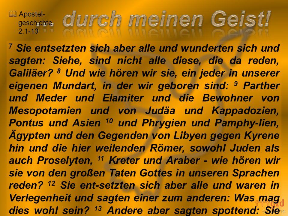  gzd 2014 Nicht durch Macht und nicht durch Kraft, sondern durch meinen Geist spricht der Herr, der Heerscharen.