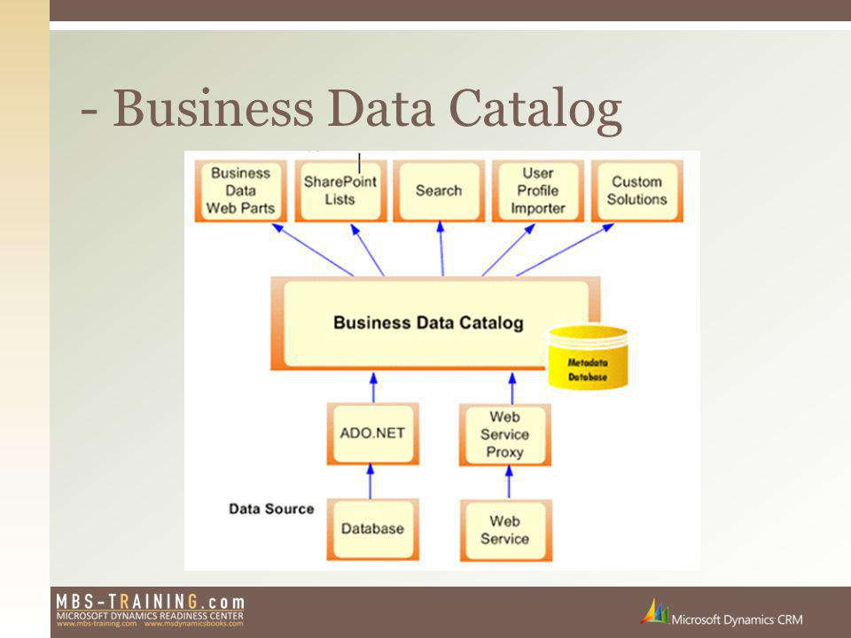 - Business Data Catalog