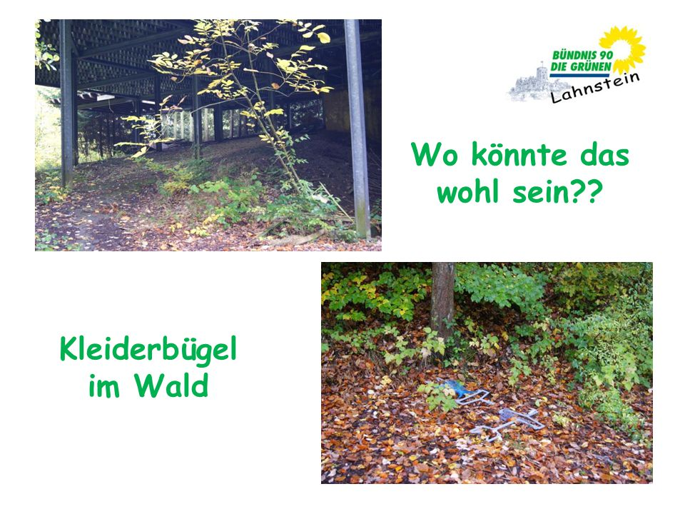 Wo könnte das wohl sein?? Kleiderbügel im Wald