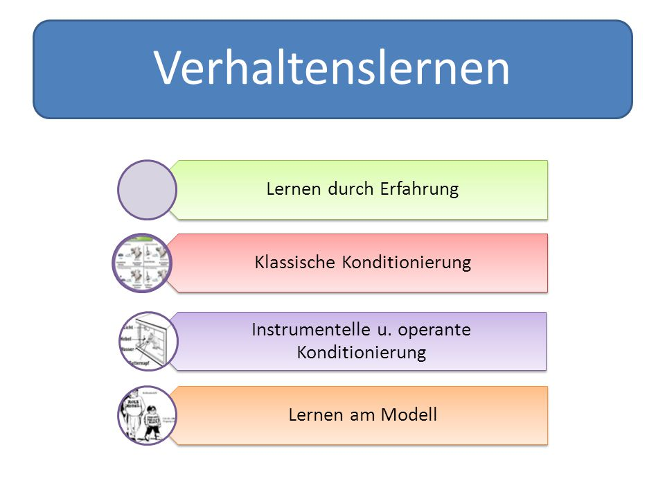 Verhaltenslernen Lernen durch Erfahrung Klassische Konditionierung Instrumentelle u. operante Konditionierung Lernen am Modell