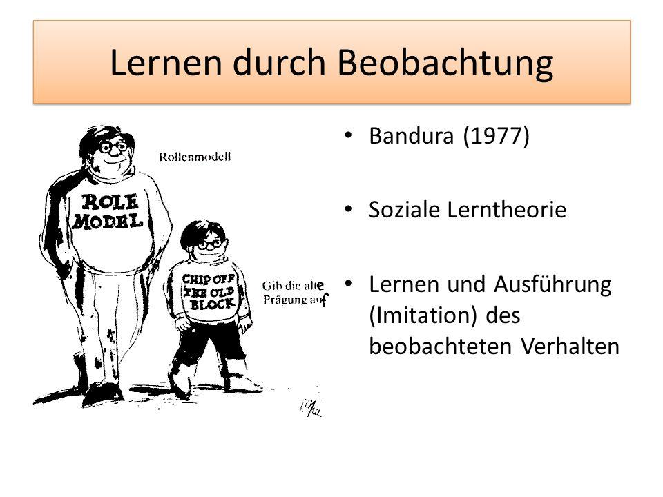 Lernen durch Beobachtung Bandura (1977) Soziale Lerntheorie Lernen und Ausführung (Imitation) des beobachteten Verhalten