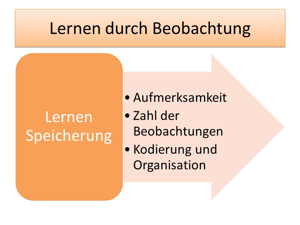Lernen durch Beobachtung Aufmerksamkeit Zahl der Beobachtungen Kodierung und Organisation Lernen Speicherung