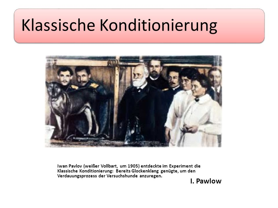 Klassische Konditionierung I. Pawlow Iwan Pavlov (weißer Vollbart, um 1905) entdeckte im Experiment die Klassische Konditionierung: Bereits Glockenkla