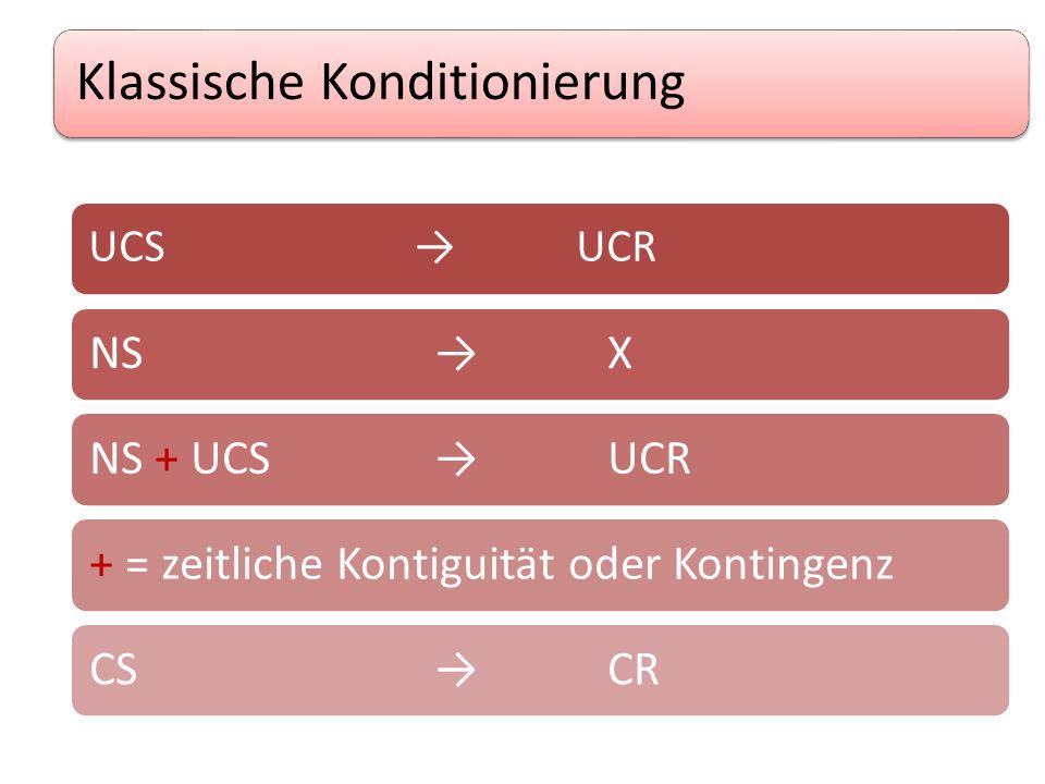 Klassische Konditionierung UCS →UCR NS→XNS + UCS→UCR+ = zeitliche Kontiguität oder KontingenzCS→CR