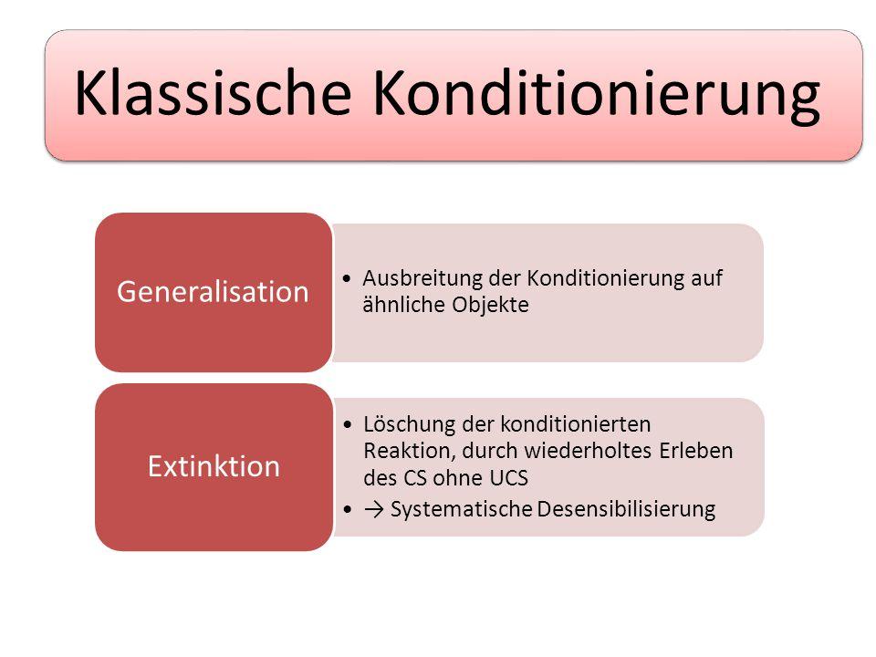Instrumentelle Konditionierung Thorndike (etwa 1899) Problemkäfig Bedürfnisspannung → Versuch – Irrtum Lernen am Erfolg