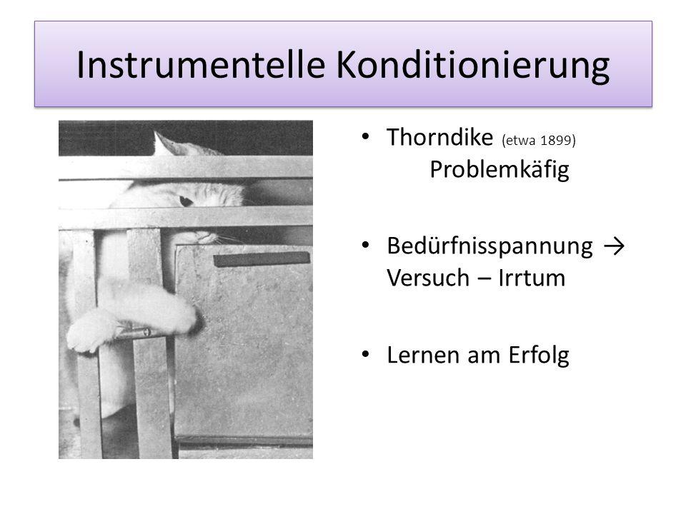 """operante Konditionierung Operante Konditionierung Skinner (Mitte des 20.Jh) """"Skinnerbox Gesetz des Effekts"""