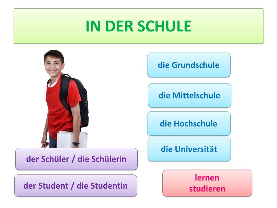 IN DER SCHULE der Schüler / die Schülerin die Grundschule die Mittelschule die Hochschule die Universität lernen studieren lernen studieren der Student / die Studentin
