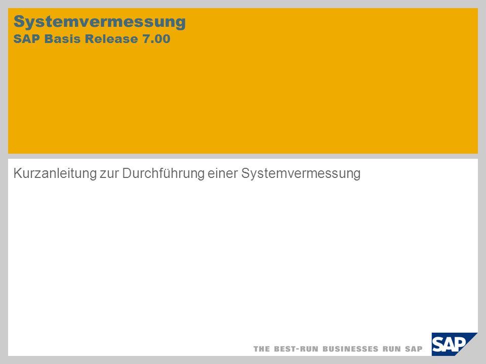 Systemvermessung durchführen 1.Durchführen einer neuen Systemvermessung 2.Anzeigen der Ergebnisse als Protokoll 3.Onlineübertragen der Ergebnisse an SAP 1.2.3.