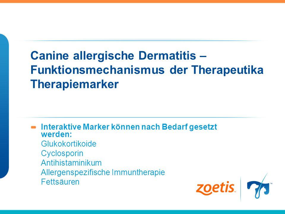 Canine allergische Dermatitis – Funktionsmechanismus der Therapeutika Therapiemarker Interaktive Marker können nach Bedarf gesetzt werden: Glukokortik