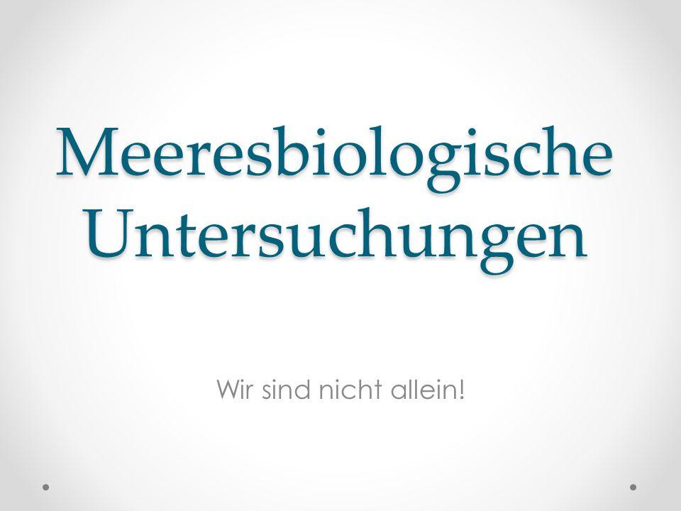 Meeresbiologische Untersuchungen Wir sind nicht allein!