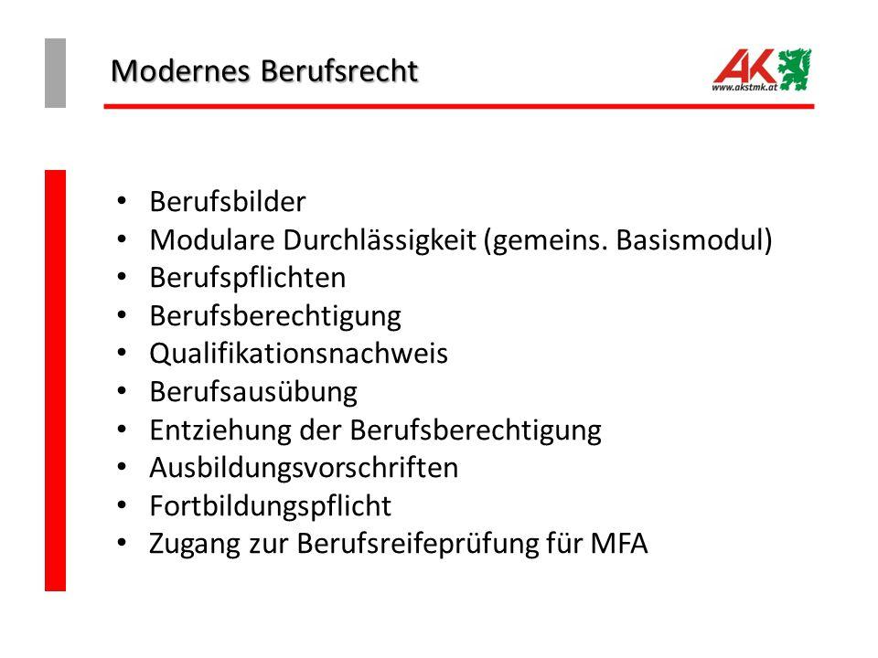 Modernes Berufsrecht Berufsbilder Modulare Durchlässigkeit (gemeins. Basismodul) Berufspflichten Berufsberechtigung Qualifikationsnachweis Berufsausüb